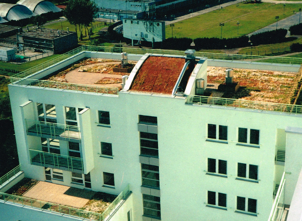 zielony-dach-hansegrand